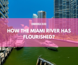 How the Miami River has flourished?